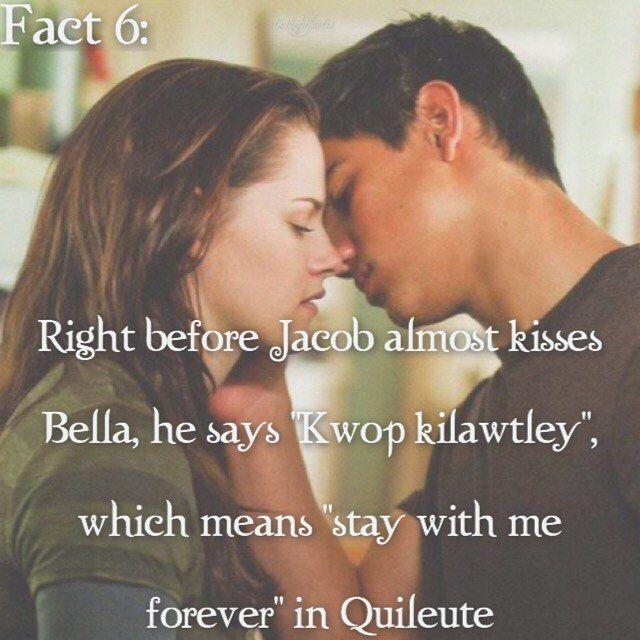 Twilight Facts twilightfactss WEBSTA Instagram