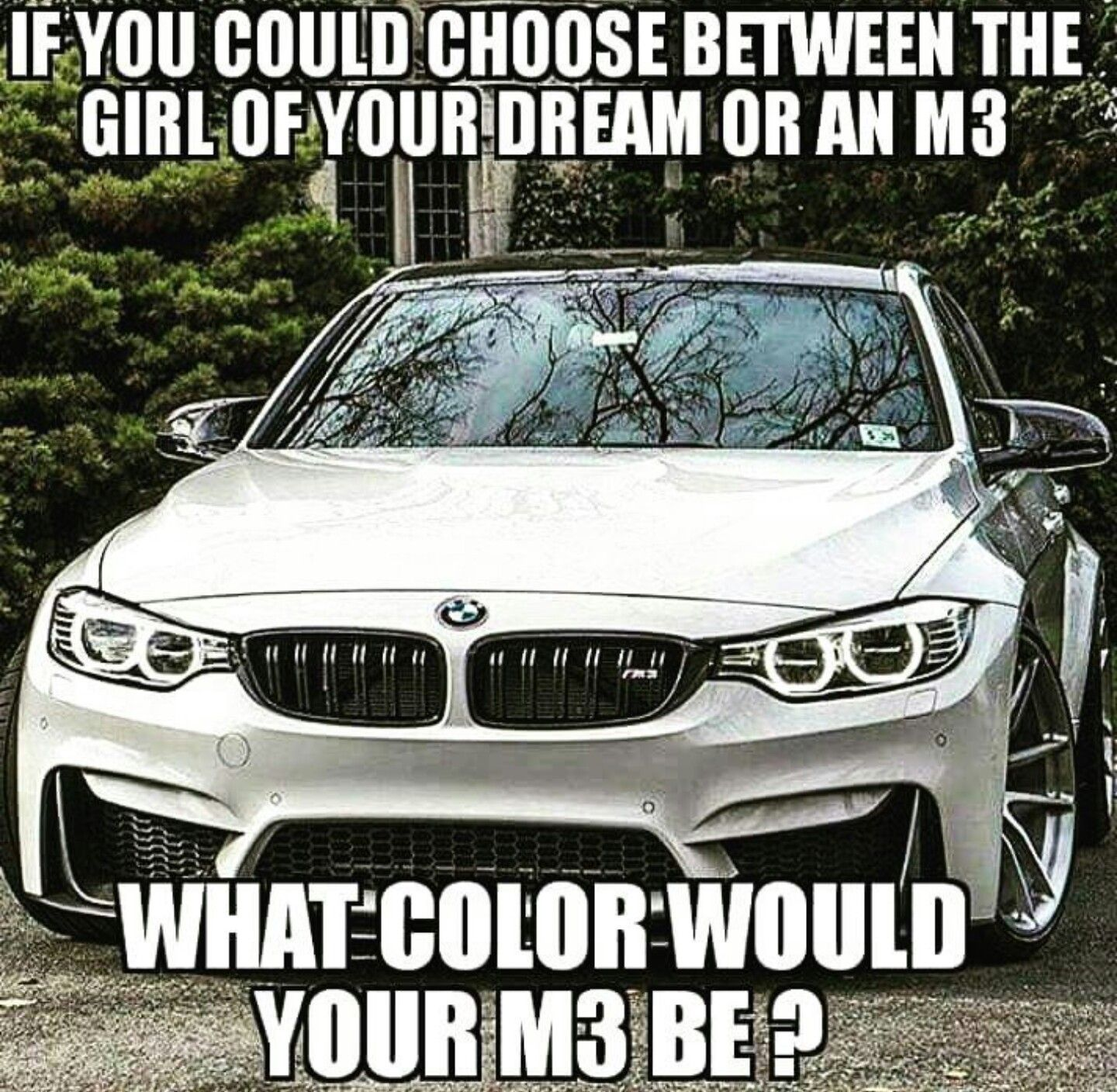 Bmw Quotes What Color Would Your M3 Be Bmw  Quotes  Pinterest