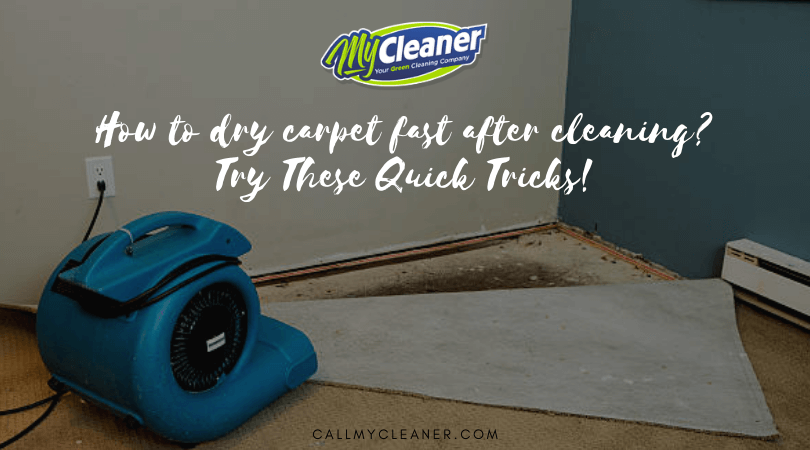 How to dry carpet fast after cleaning? Does this question arise in your mind especially during monsoons? Without proper drying the carpet may attract more dirt and germs, mildew growth will start and also blows unpleasant odor.   #carpetcleaning #carpetcleaningnearme #professionalcarpetcleaning #carpetcleaningcompany #tipsoncarpetcleaning #carpetcleaningincapecoral #capecoralflorida #capecoralflorida