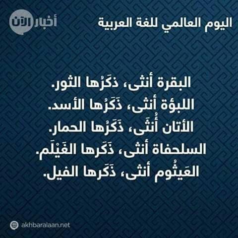 Pin By Haidar Juma On اللغة العربية Arabic Words Words Quotes Inspirational Words