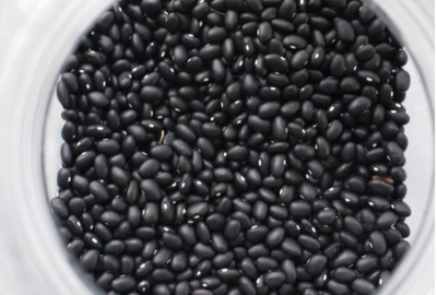 How To Grow Black Beans Black Bean Plant Beans Growing Tomatoes