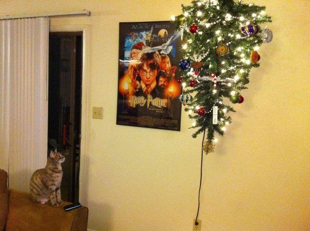 How To Get Cats To Stay Off Christmas Tree