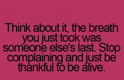 Yes So Stop Bitching Be Thankful Youre Alive Awesome Insights