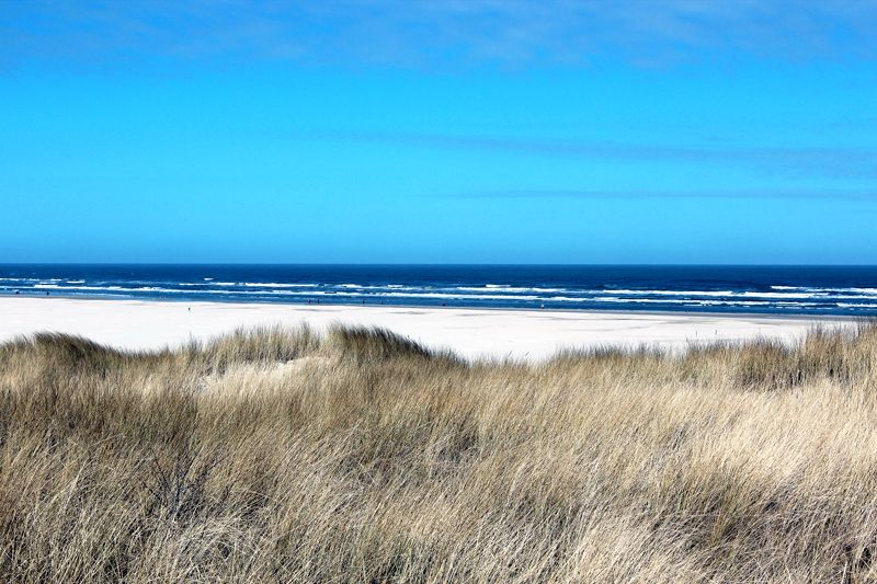 juist strand - Google Search http://www.haus-angelika.de pension to stay recommended by toni