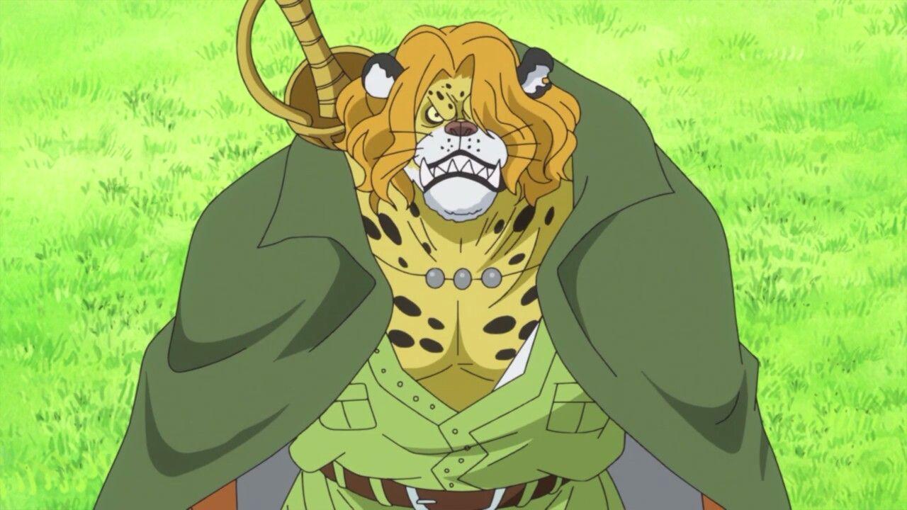 Pedro - One Piece Anime Episode 784   One piece anime episodes, Anime, One piece anime