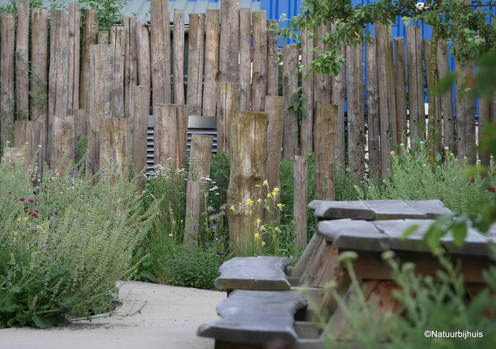 Pin Van Carina Schalkwijk Op Jardin Tuin Palen Inheemse Tuin Tuin Afscheiding