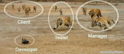 Humour - Life of an Engineer - Pictures Says it All
