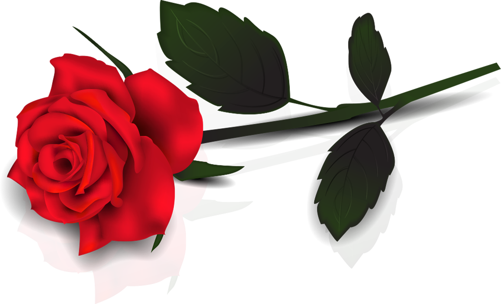 Lovely Transparent Red Rose Clipart Gallery Yopriceville High