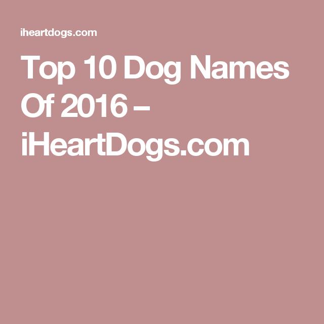 Top 10 Dog Names Of 2016 – iHeartDogs.com
