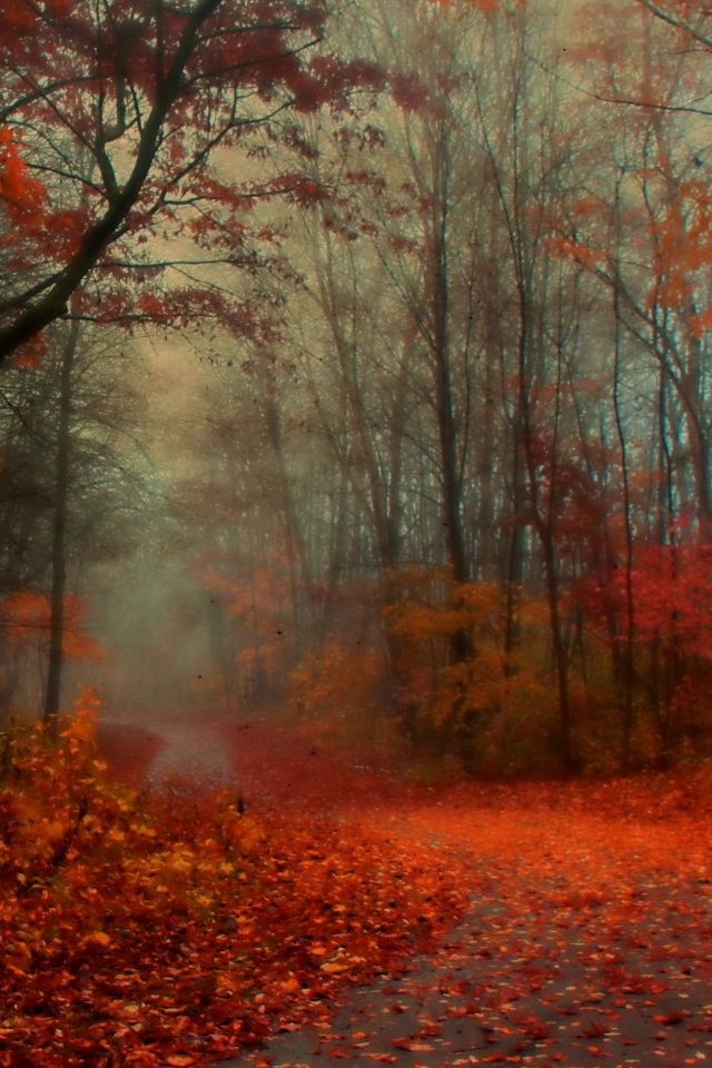 Romantic Autumn Iphone 4s Wallpapers Ipad Wallpaper Watercolor