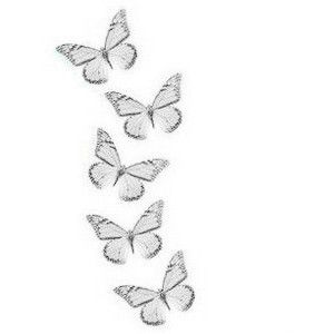 Transparent Tumblr Butterfly