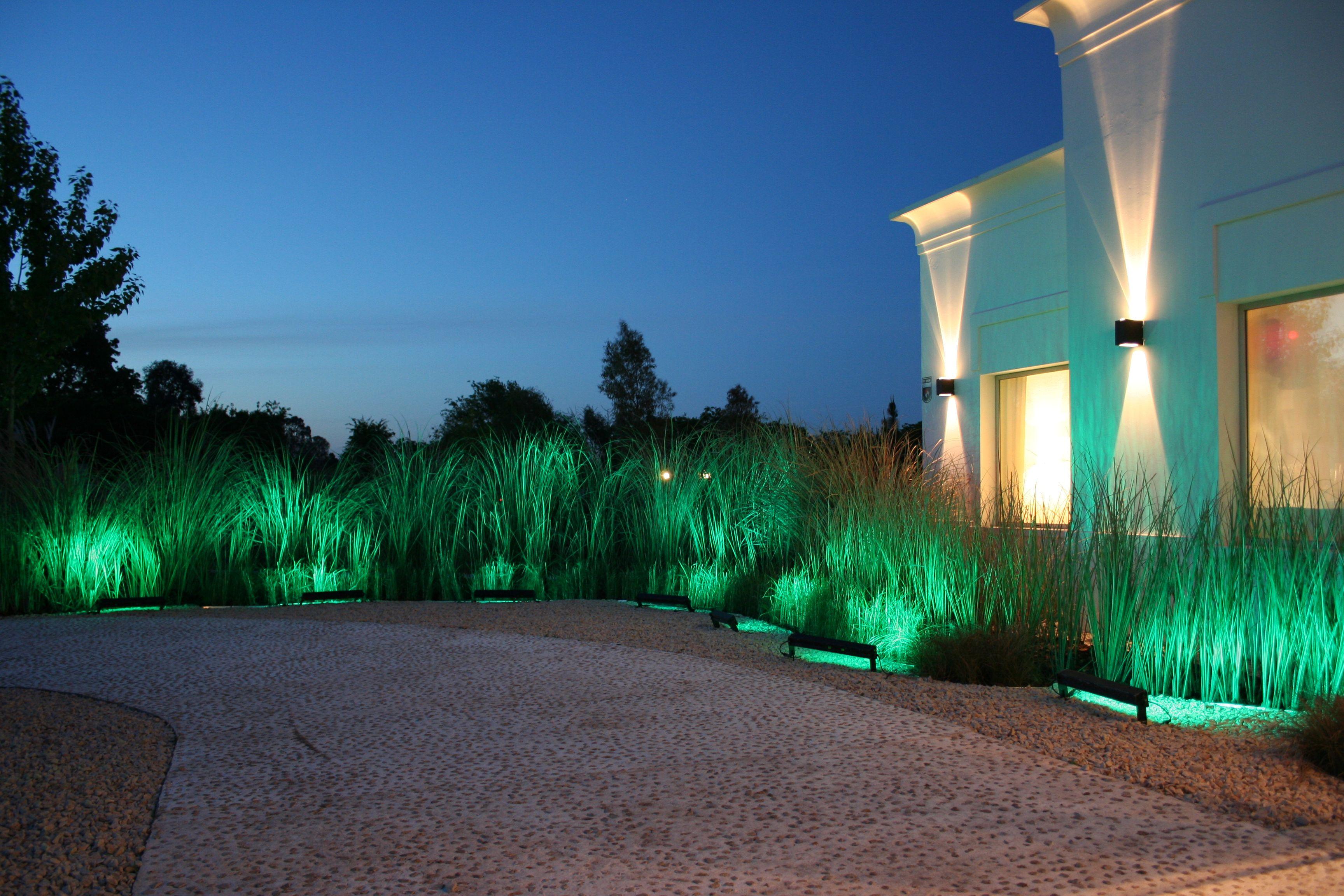 oda al verde gramineas iluminacion jardin grasses garden lighting - Iluminacion Jardin
