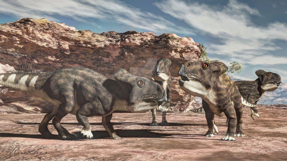 Protoceratops juvenile by PaleoGuy on DeviantArt