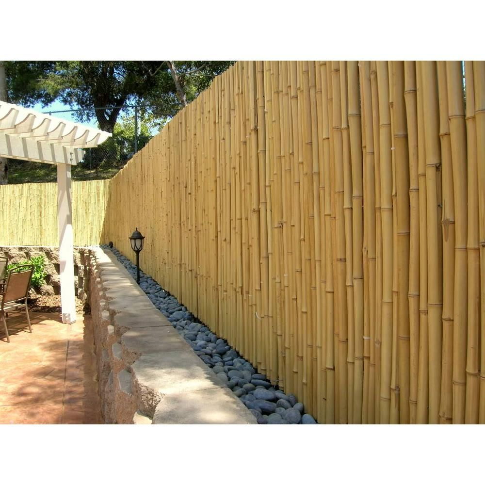 Backyard X Scapes 3 4 In D 4 Ft H X 8ft W Natural Bamboo Fence