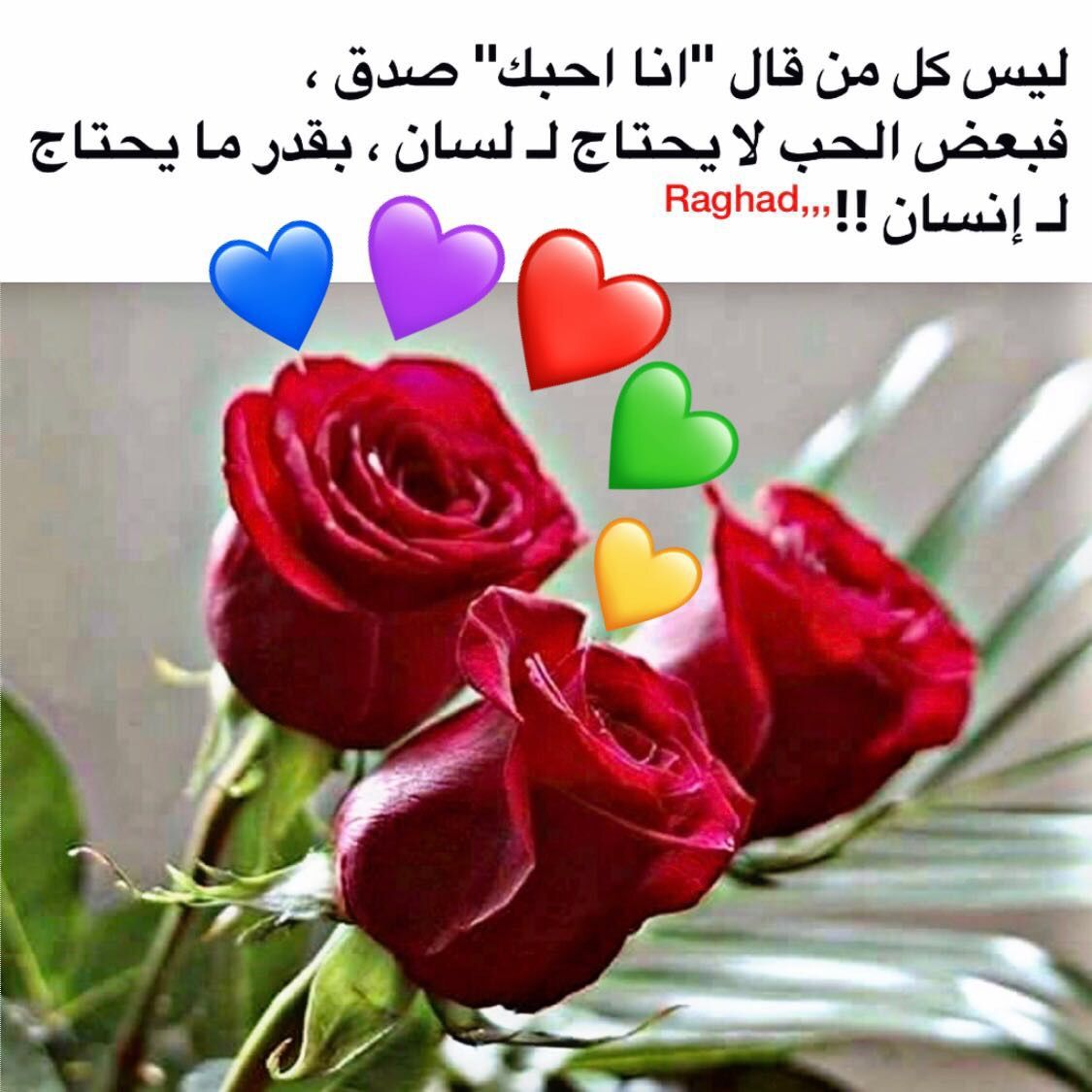 Desertrose الحب يحتاج إلى إنسانية Beautiful Arabic Words Love Words Flowers