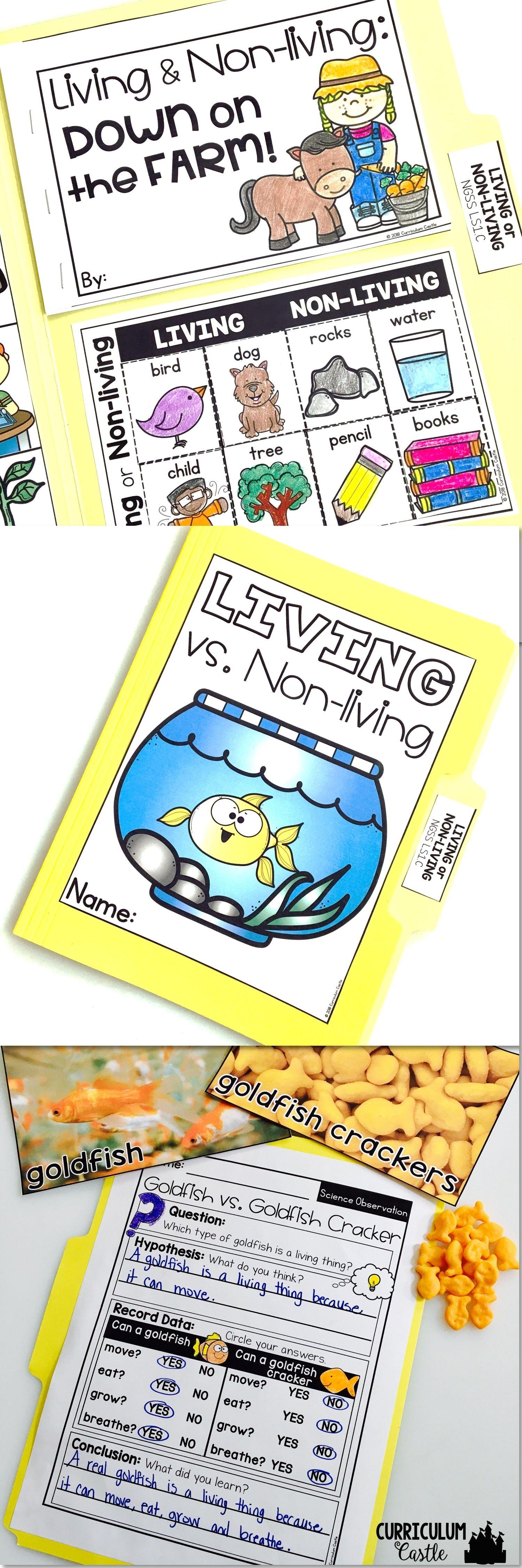Living Vs Non Living Science Activities Folder