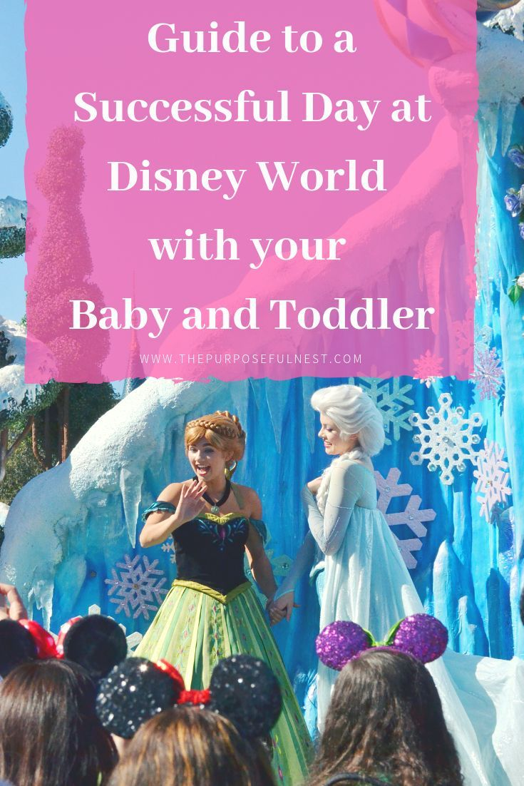 Disney With A Baby And Toddler