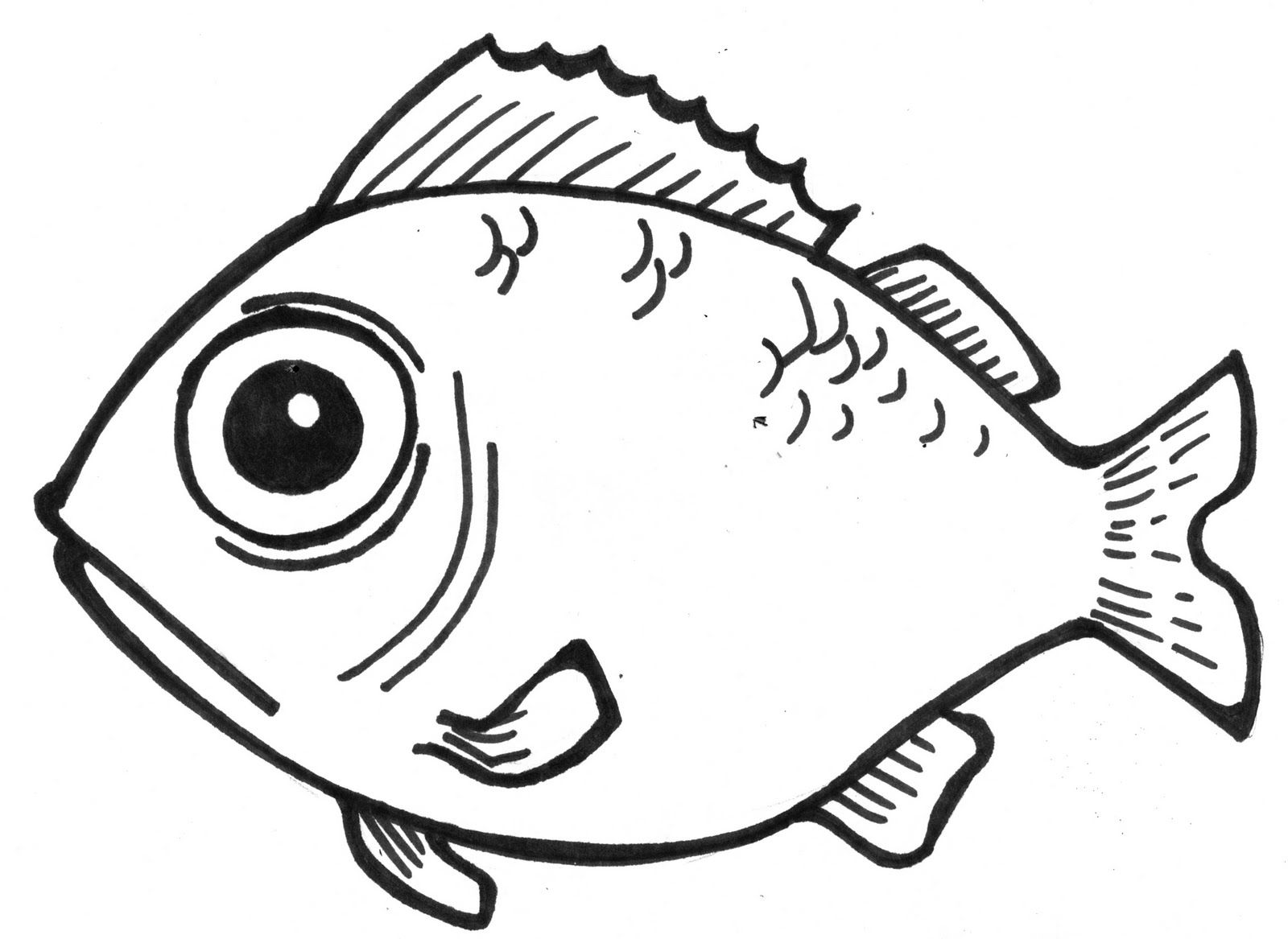 Easy Bass Fish Drawings