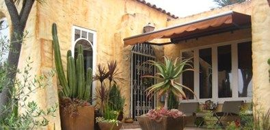 The color, n the cactus for a patio area