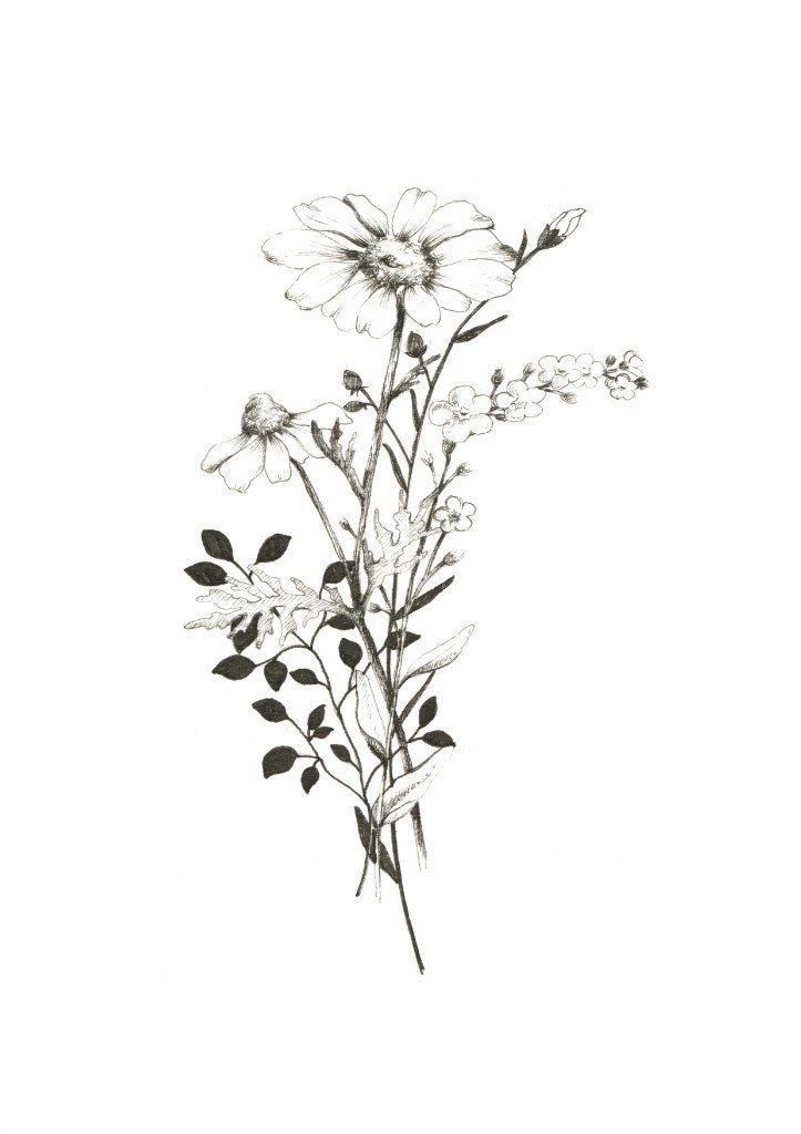 Wild flowers. #flores #plantas #wildflowers