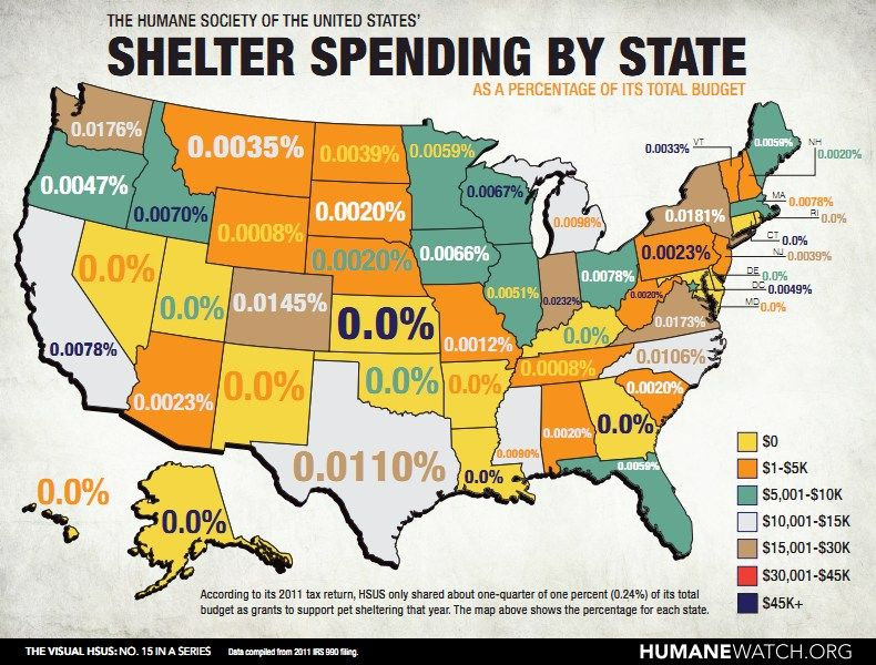 Humanewatch How Little Does Hsus Give To Shelters In Your State Please Do