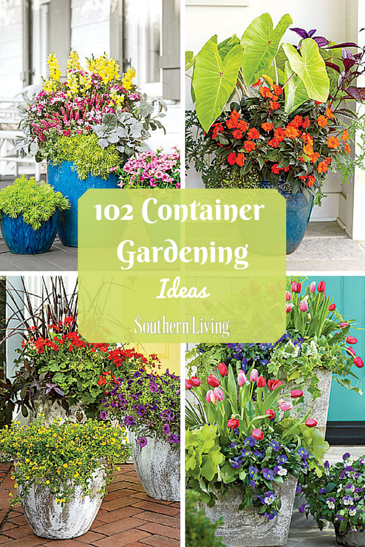 Unique By Design Landscaping Containers Plants Container Plants Garden Containers