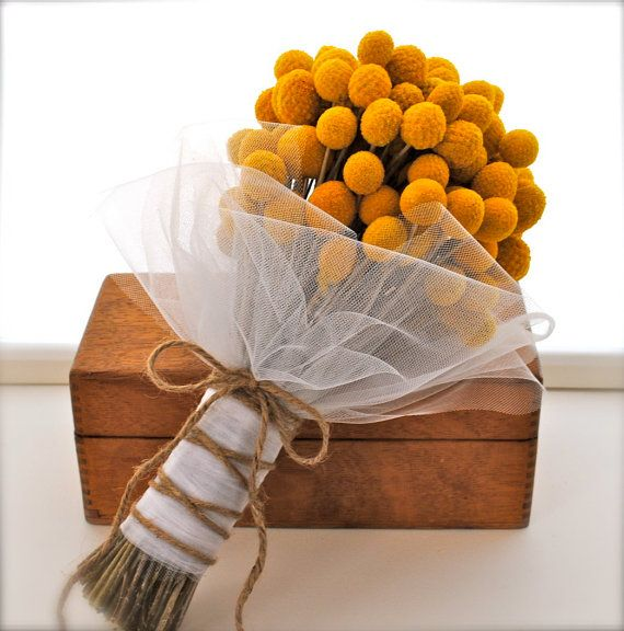 These are called Yellow Craspedia -- can't say Craspedia? Call them #adorable especially for a #fall wedding! <3