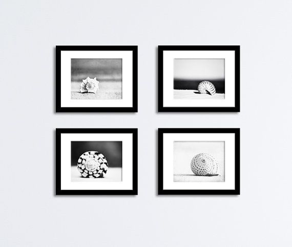 Seashell black and white photography set four by carolyncochrane 48 00