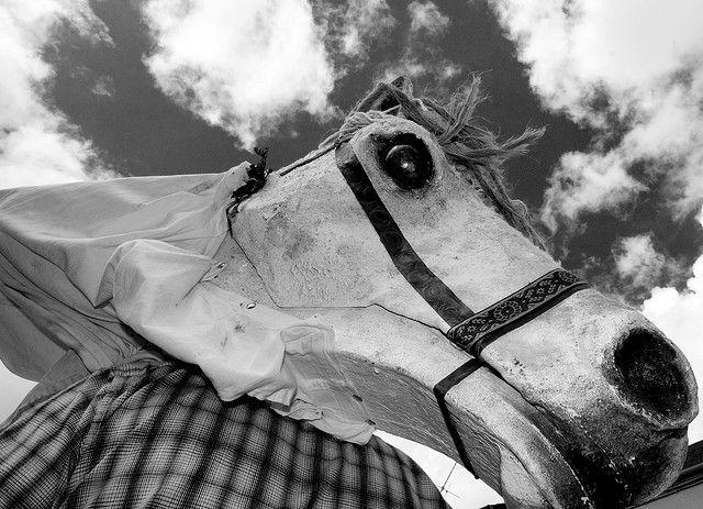Hobhorse mummer mask (Irish)