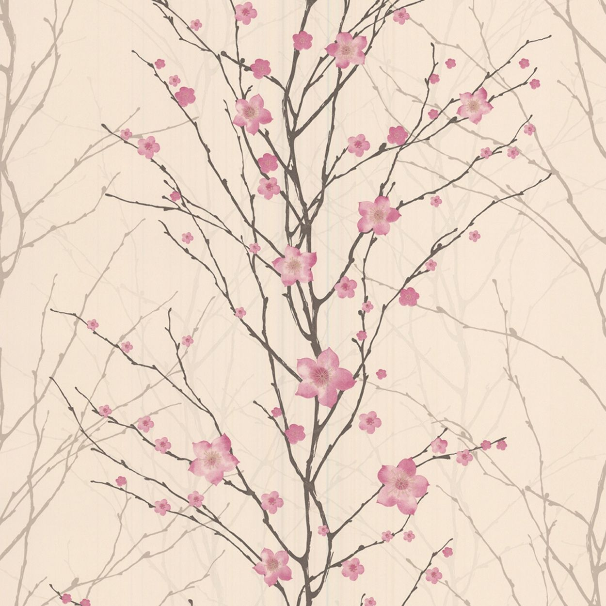 Graham Brown Pink Cream Vitality Floral Wallpaper At Debenhams