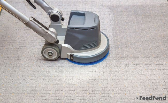 Features of a good carpet cleaner - Guide To Best Carpet Cleaner For Pets