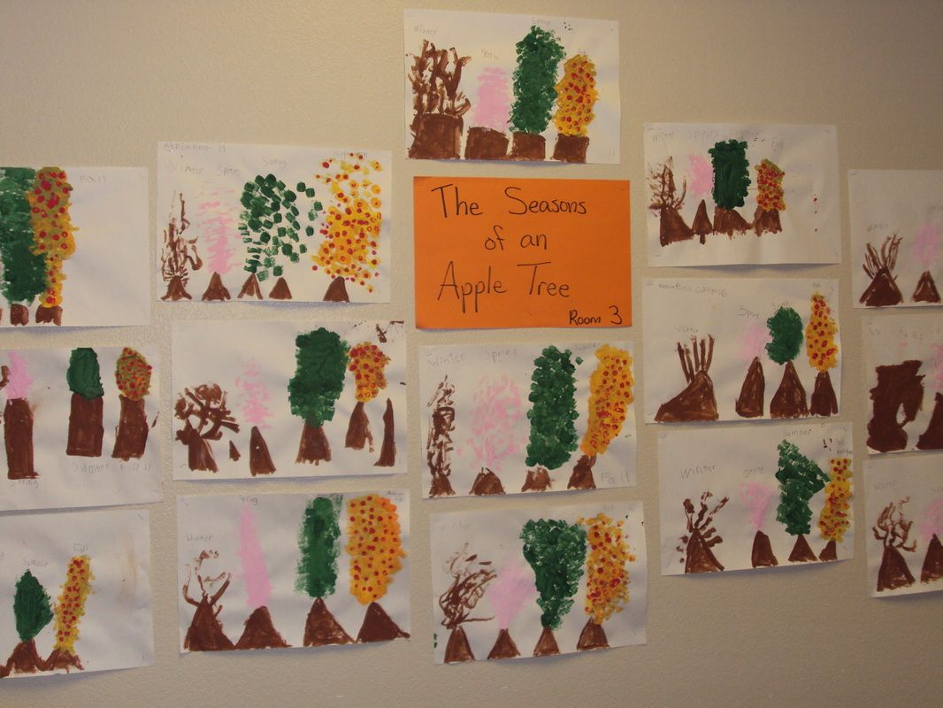 Mrs Trouten S 1st Grade Apple Tree Seasons With Images
