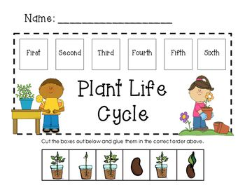 This is a worksheet where children will put the life cycle of a ...