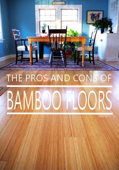 Pros and cons of bamboo floors plaster disaster for Kitchen flooring options pros and cons