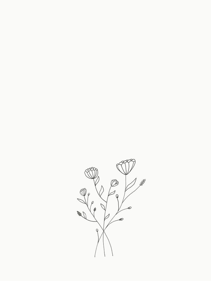 Pin By Caroline Kantorczyk On Illustration Minimal Small Flower Drawings Flower Line Drawings Flower Drawing