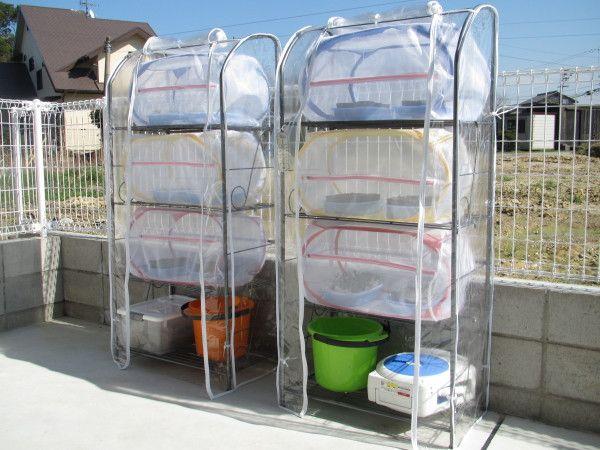 防虫ネットカプセル 水耕栽培 野菜 水耕栽培 家庭菜園 プランター