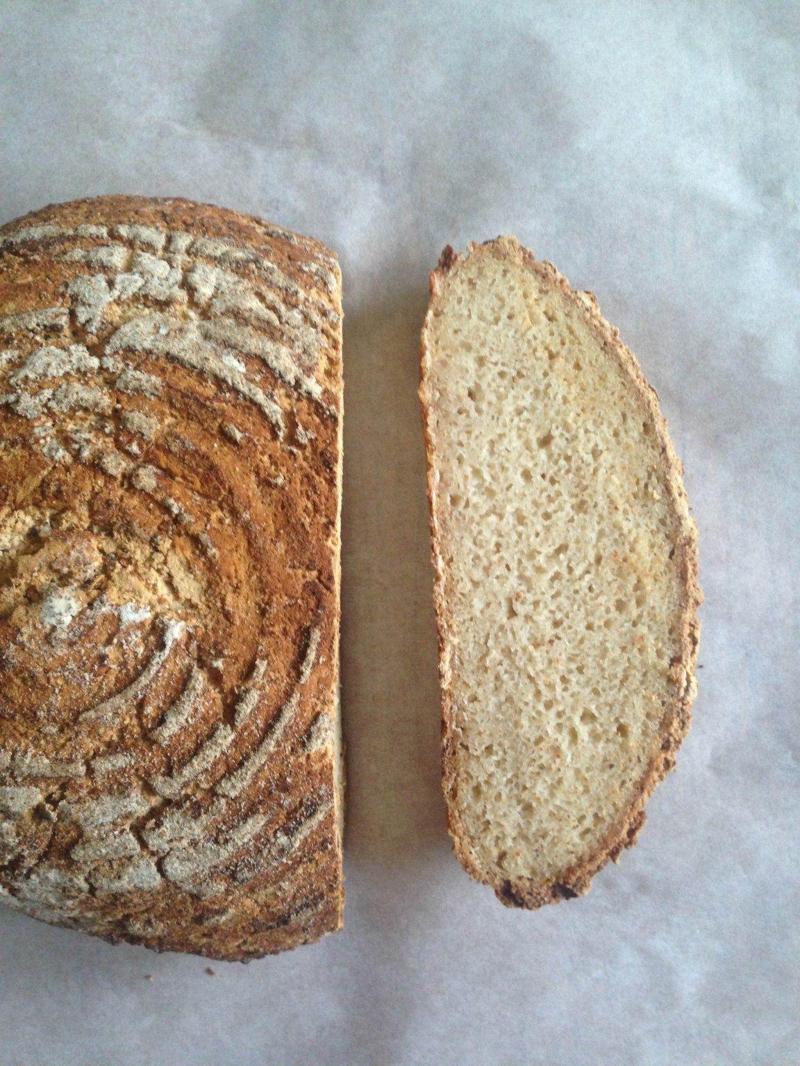 gluten-free sourdough