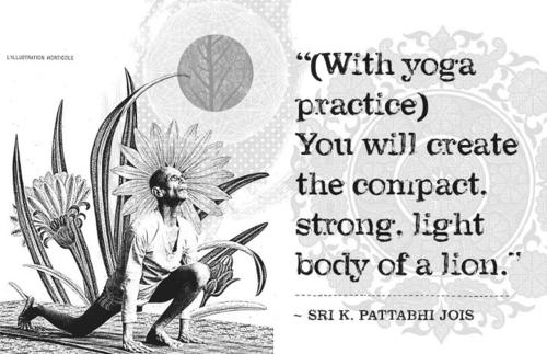 Ashtanga wisdom