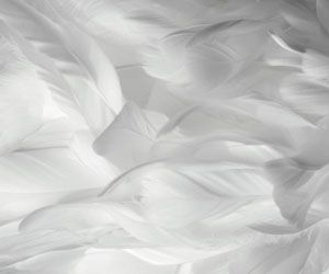 how to clean down feather doona