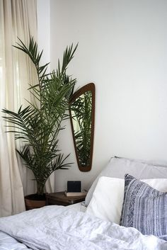 Dreamy bedroom. Love the palm plant.