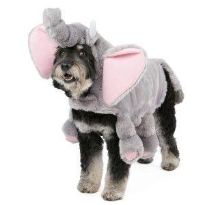 Top Paw Pet Halloween Elephant Costume Costumes Petsmart