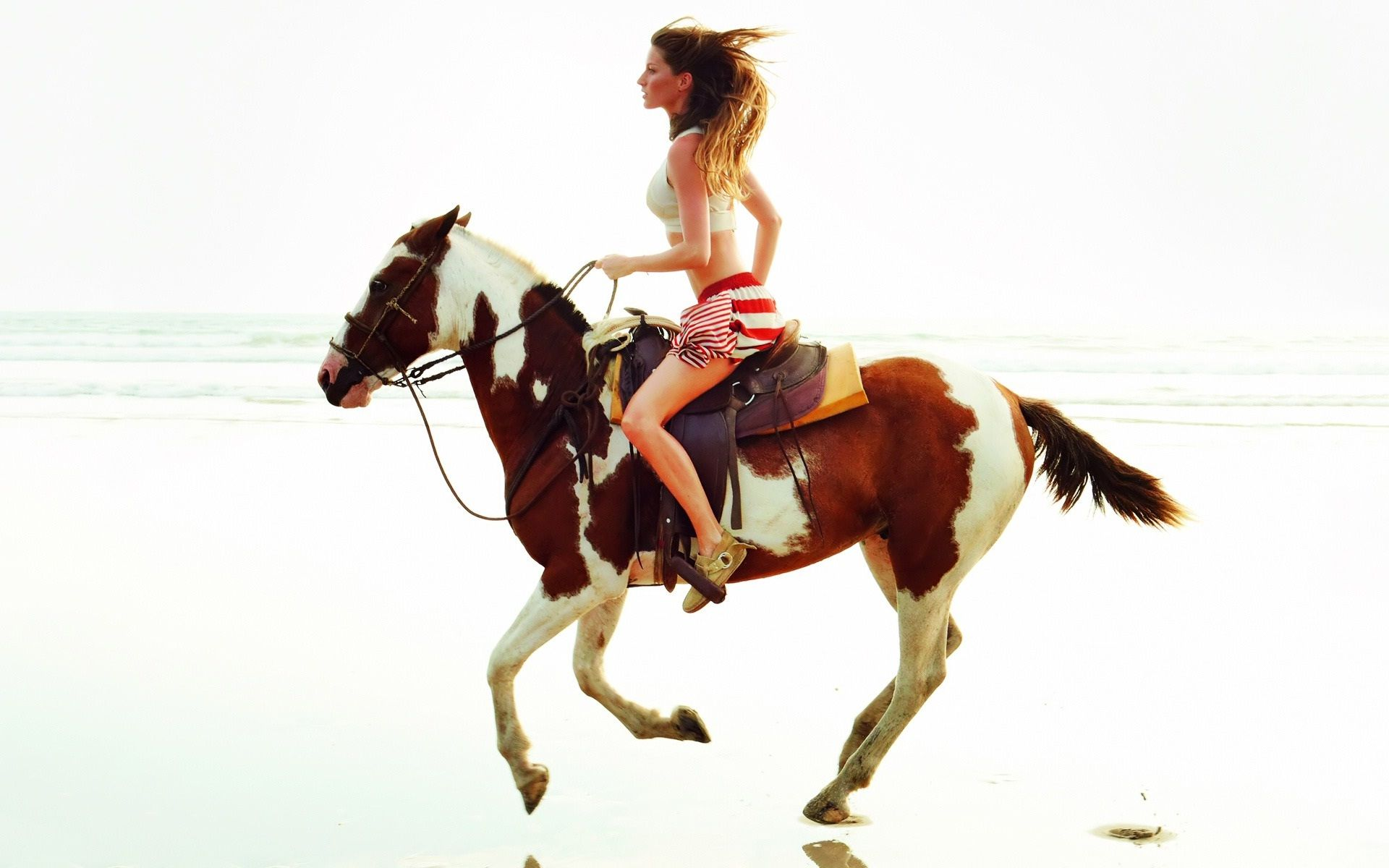 Wonderful Wallpaper Horse Girly - 76bda730f3d1804ba92ee4b29344f5c4  Best Photo Reference_809689.jpg