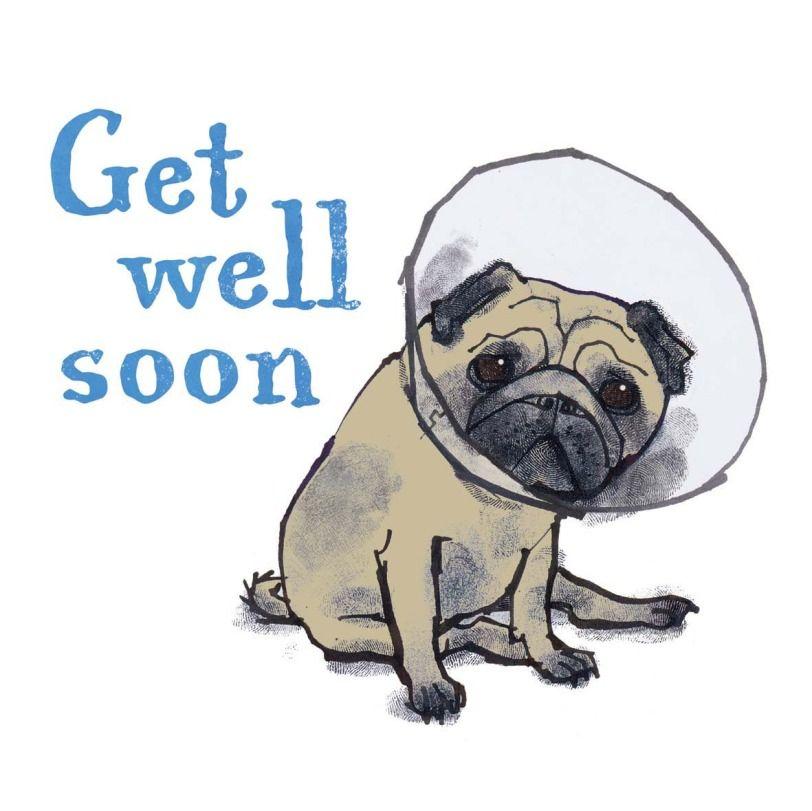 Lpa0027 Get Well Pug Pug Cartoon Pugs Baby Pugs