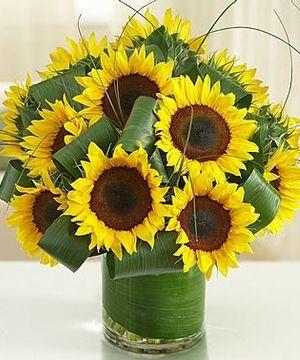 Flowers Sunflower Centerpiecessunflower