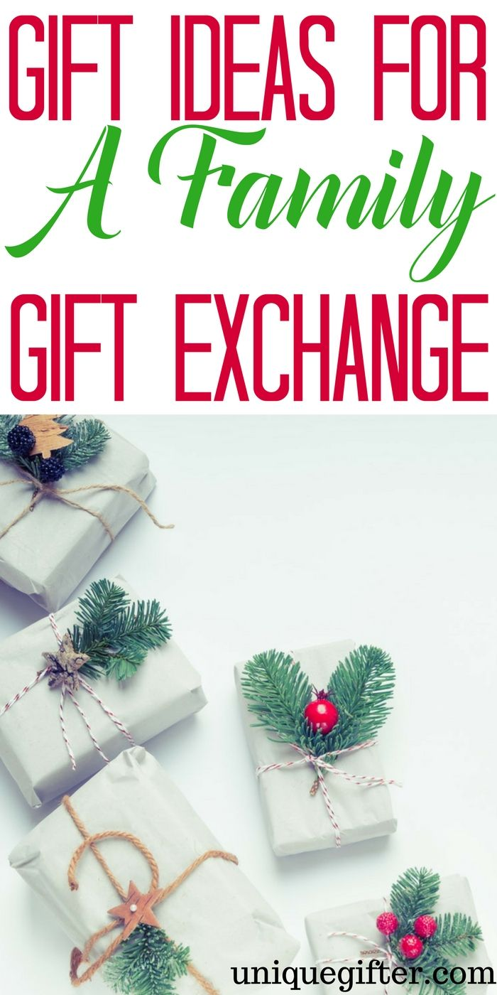 20 Best Gift Ideas for a Family Gift Exchange | Christmas budget ...