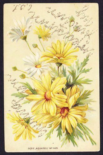 Daisy flower glitter  vintage postcard