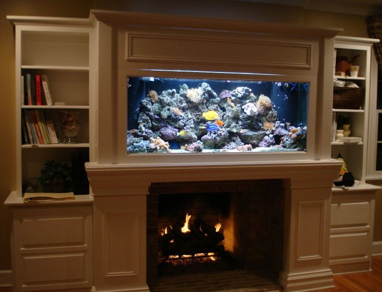 aquarium fireplace google search aquarium pinterest