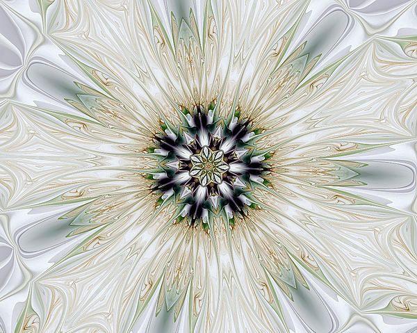 Fractal Desires Kaleidoscope by Barbara A Lane