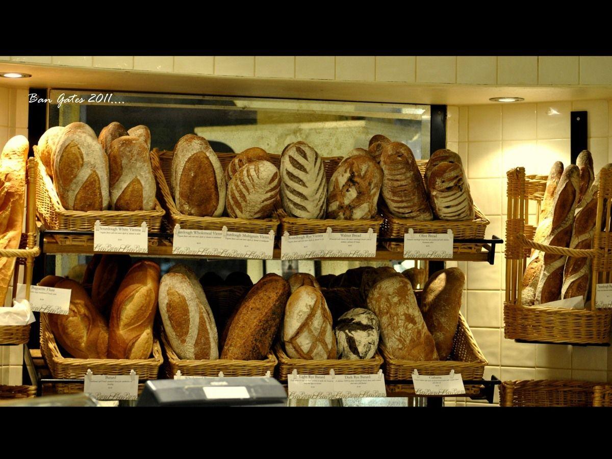 Bakery bakery bread bakery design bread baking