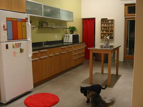 Red, kitchen, cat.